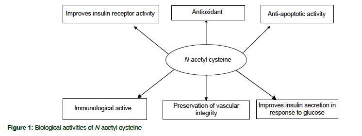 Vai trò của N-acetylcysteine (NAC)