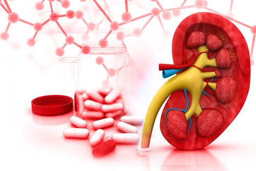 Thuốc tây điều trị sỏi đường tiết niệu