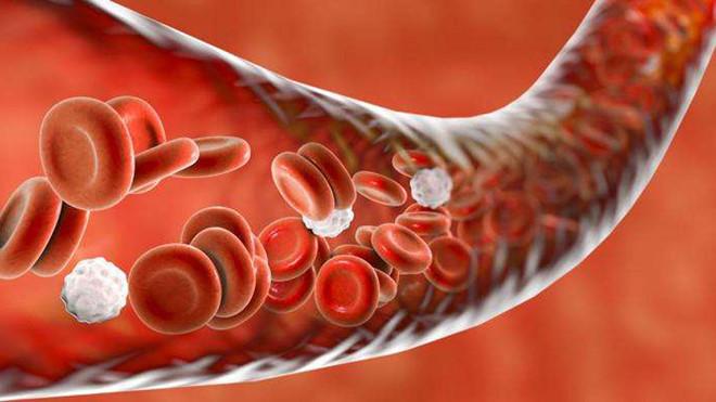 Rối loạn máu đông là một trong những biến chứng nguy hiểm của suy gan